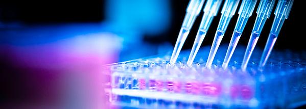 Pharmaceutical Industry Temperature Calibration