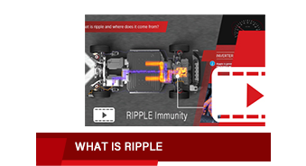 Ripple immunity video