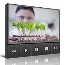 Webinar Environmental